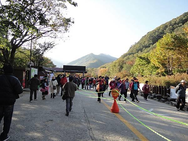 韓國 709.jpg