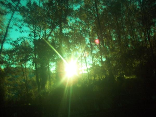 日出再來一張