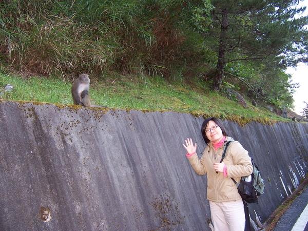 耍白痴跟猴子合照