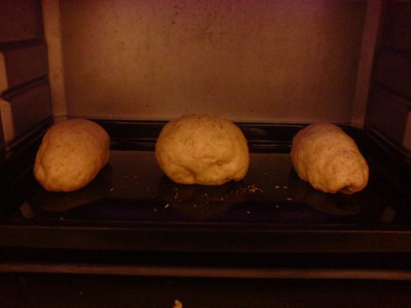第一次的麵包 (超級醜的 ><)