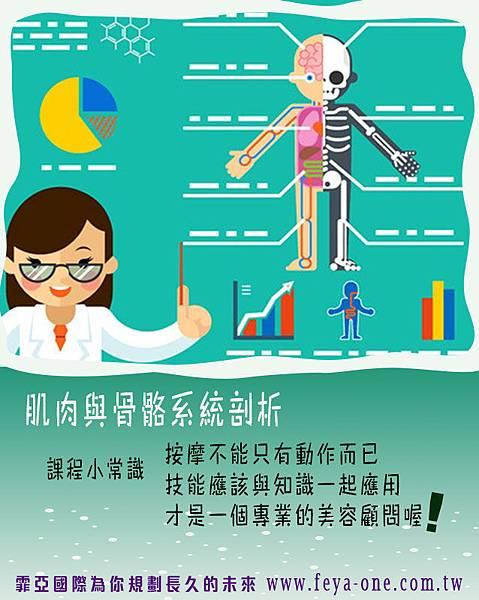 全身按摩-三級肌肉 (1)