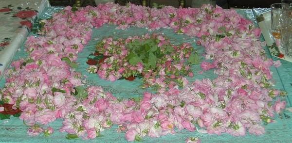 玫瑰莊園的宴廳.jpg