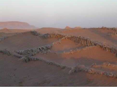 風景07-沙漠.jpg