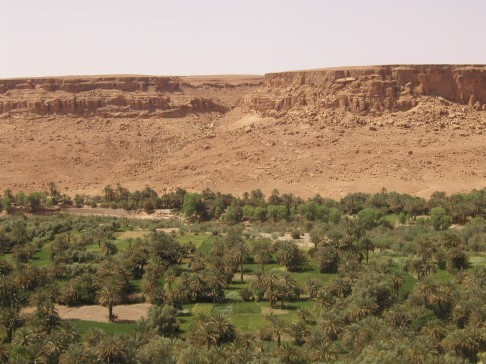 風景09-沙漠裡的綠洲.jpg