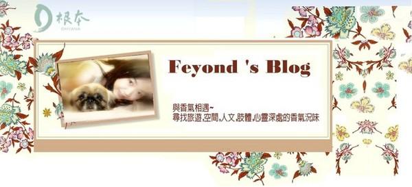 feyond02
