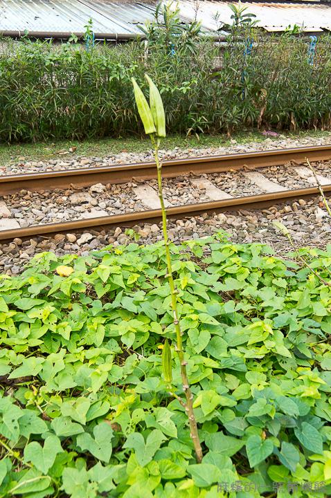 20121213林口線-214