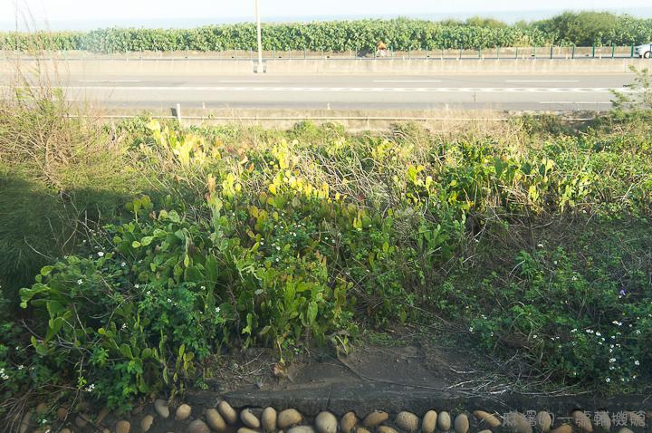 20121213林口線-107