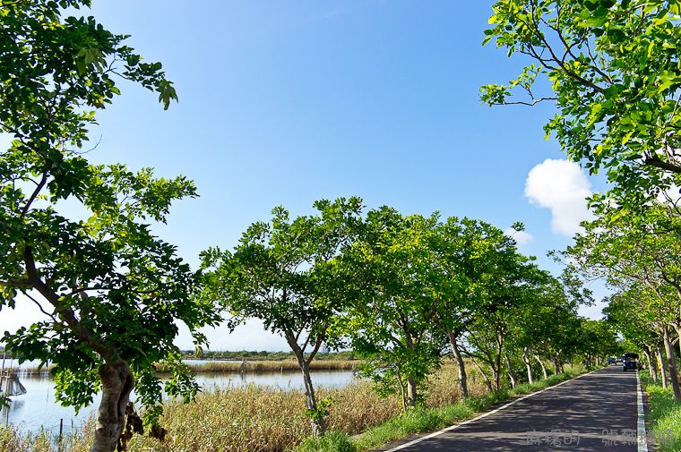 20130907頂埔水產養殖區-11.jpg