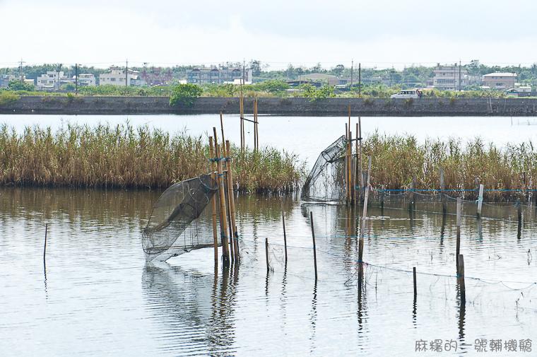 20130907頂埔水產養殖區-16.jpg