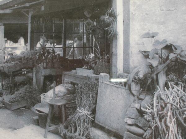萬華青草巷資料照 532.jpg