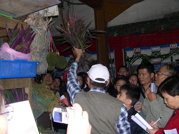 2003~12~6萬華青草巷導覽活動一 006.jpg