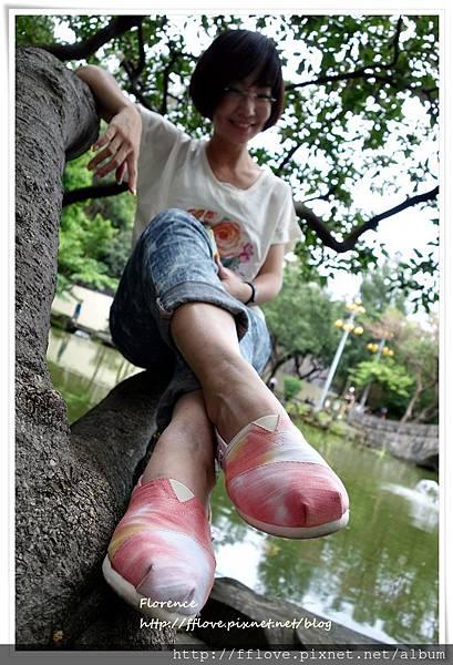 TOMS 鞋42.JPG