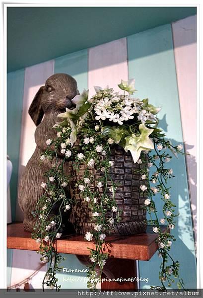 兔子兔子14.JPG