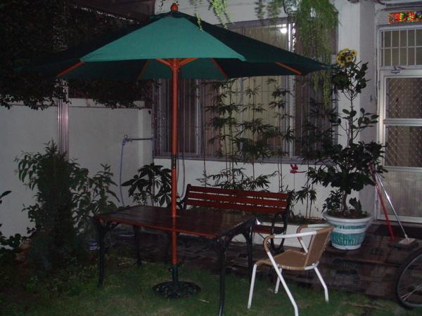 晚上庭院一隅