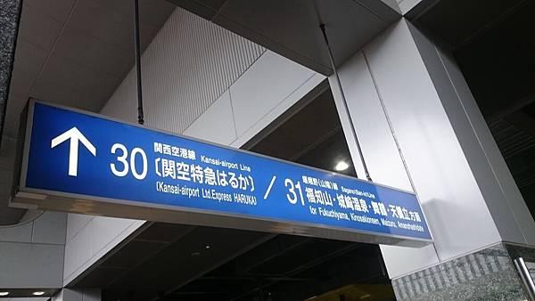78963 001.JPG