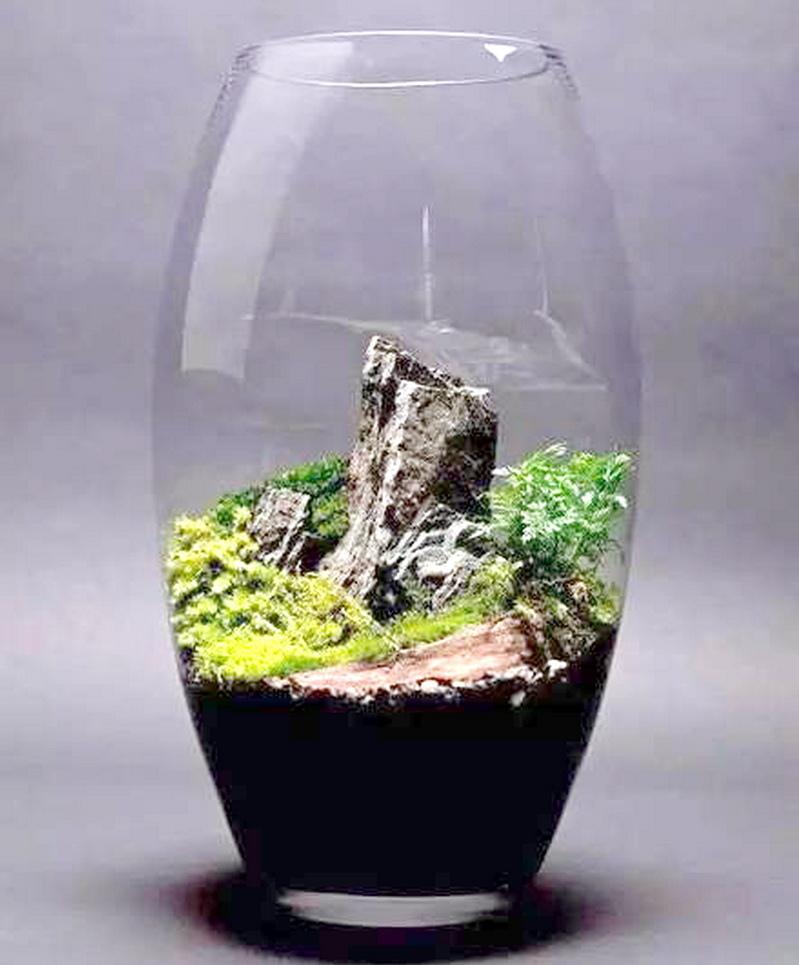 玻璃內盆景