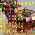 79137_meitu_1.jpg