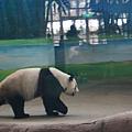 taipei zoo 5