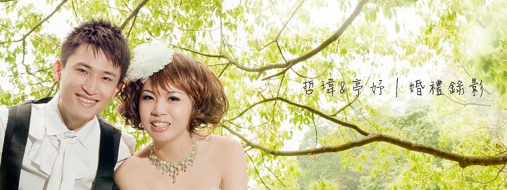 blog-banner080
