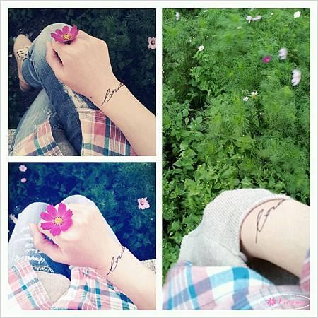 PhotoGrid_1356432452144