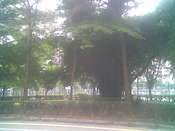 影像004.jpg