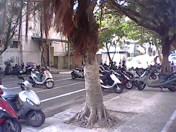IMG0049A.jpg