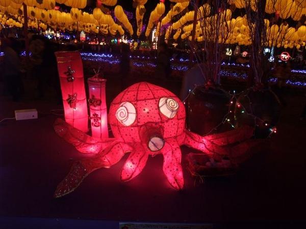 紅章魚.JPG