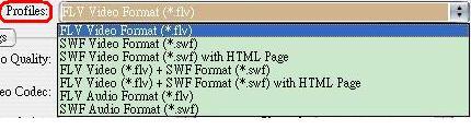 FLV-04-格式選擇.JPG