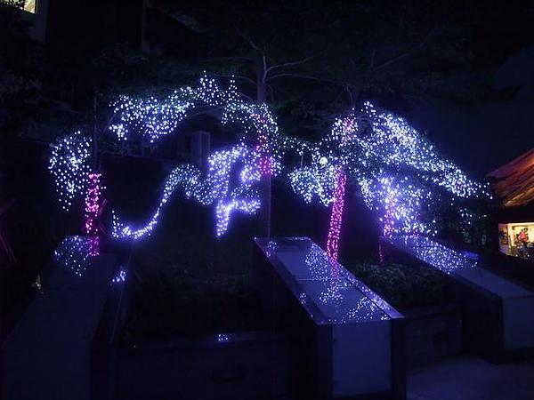 碧潭-LED樹-2.JPG