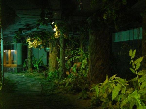 台塑文化紀念館-奇幻森林.JPG