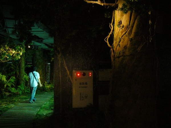 台塑文化紀念館-神秘森林區到了.JPG