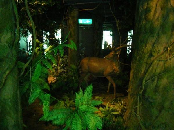 台塑文化紀念館-鹿.JPG