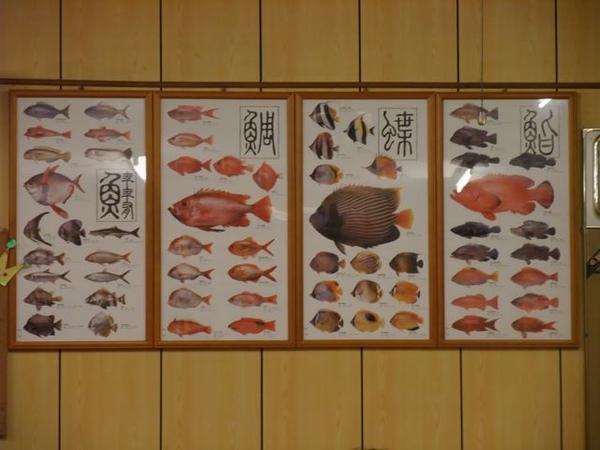 還有介紹生魚片的魚類.JPG