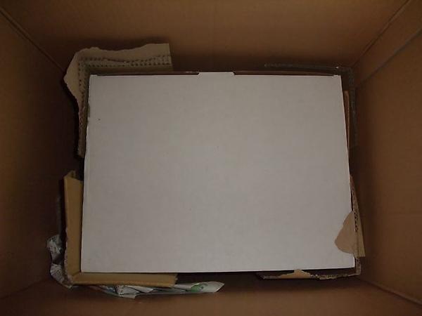 開箱發現小白箱.JPG