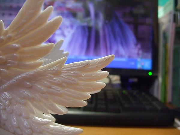 羽人非獍-翅膀-髒污的地方.jpg