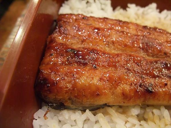 鰻魚飯-閃亮又肥美.JPG
