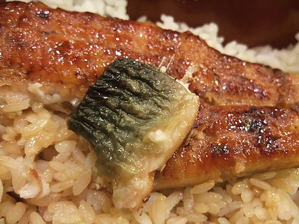 鰻魚飯-鰻魚皮.JPG