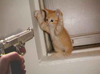 我投降了!請不要射我QQ...