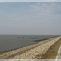堤外的蚵棚