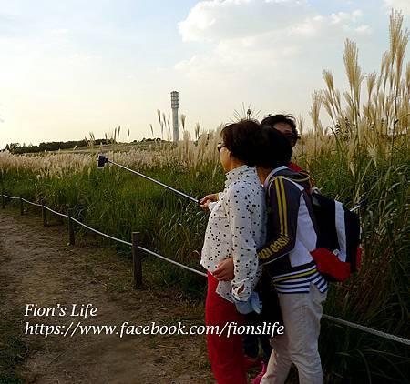 Fan page 2014.09.21_3.jpg