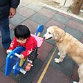 2014-01-29 14.20.21.jpg