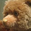 泰迪熊博物館5.JPG