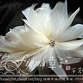 白羽水鑽毛帽胚NT1800