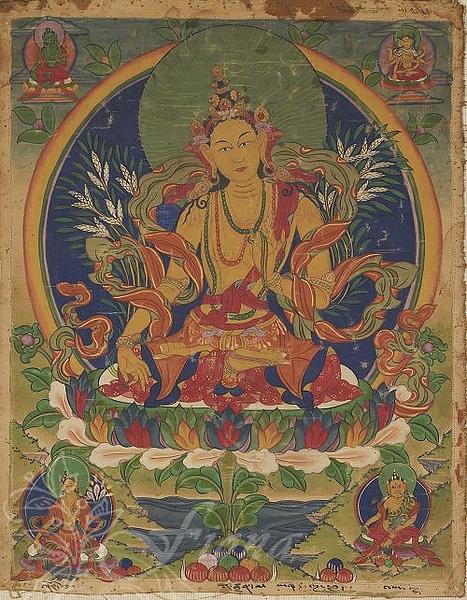 黃色財續母(Vasuddara)