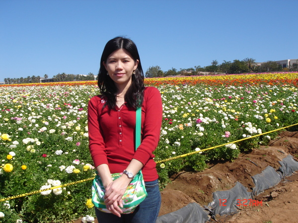 the flower field 5.JPG