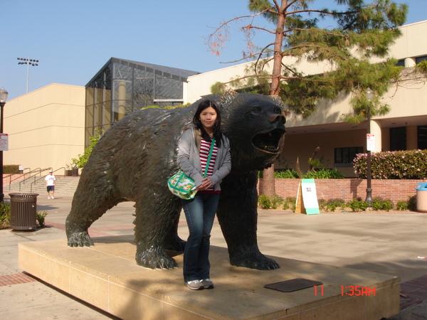 UCLA bear.JPG