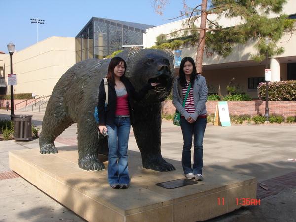 UCLA bear 2.JPG