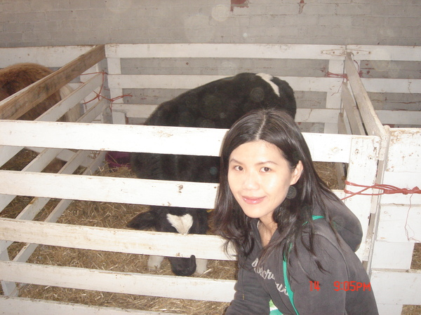 a farm in Cornell 4.JPG