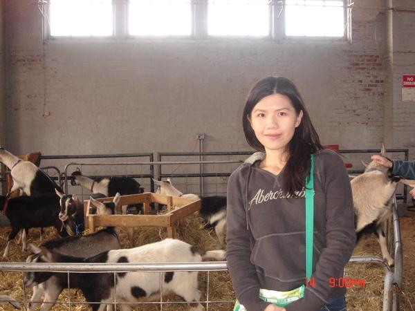 a farm in Cornell 5.JPG