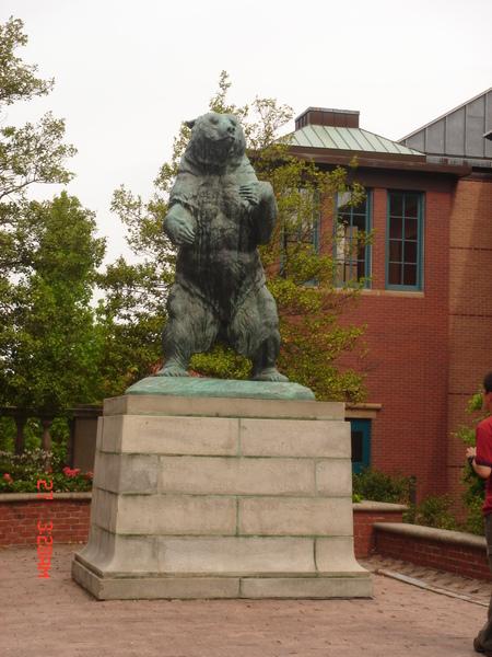 Brown University 3.JPG